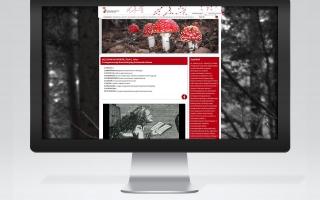 Boszorkánykörök honlap